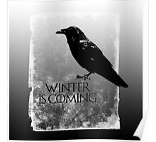 Raven ( GoT ) Poster