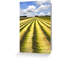 Fields of flax Greeting Card