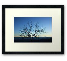 A lone tree at sunrise Framed Print