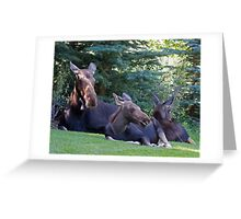 Jackson Hole Yard Art, too Greeting Card