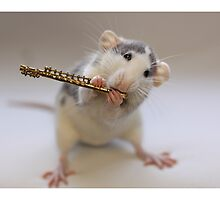 Trying to play the flute by Ellen van Deelen