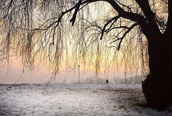 Wintry Sunset by Milos Markovic