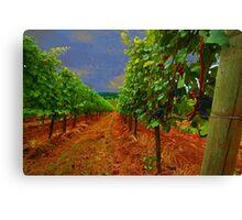 Oregon Vineyard Canvas Print