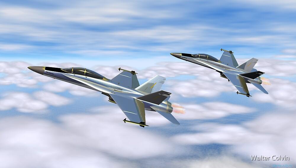 McDonnell Douglas F-18 Hornet by Walter Colvin