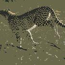Cheetah running - Photo Art by Michael  Moss