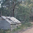 tin shed by stickelsimages