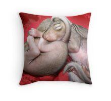 I'll Sleep Anywhere Throw Pillow