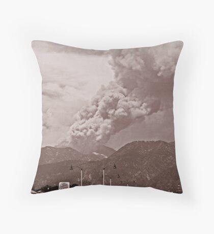 In The News Throw Pillow