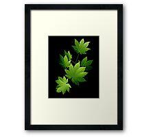 Maple Branch 1 Framed Print