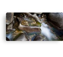 Creek forged Canvas Print
