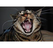 Yawn Photographic Print
