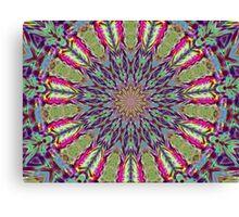 Feather Kaleidoscope Canvas Print