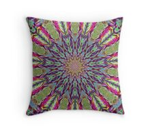 Feather Kaleidoscope Throw Pillow