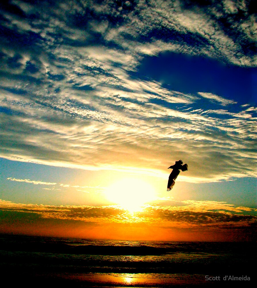 SUNRISE FLIGHT (SPIRITUALITY) by Scott  d'Almeida