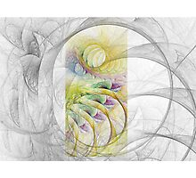 Fractal Sketching Photographic Print