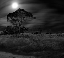 Movement in the Night by CRSPHOTO
