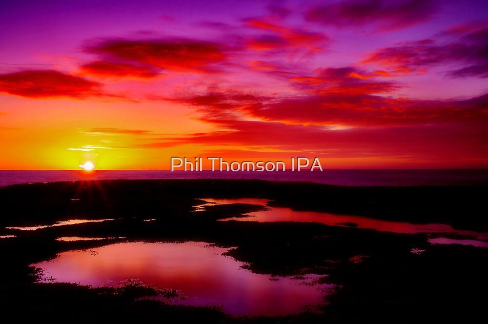 """Dawn Splendour"" by Phil Thomson IPA"