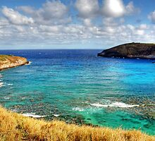Hanauma Bay by Clark Thompson