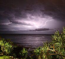 Electric Night  by Matt  Harvey