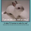 Bunny Coat by Samitha Hess Edwards