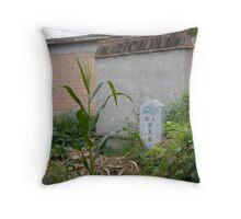 Story of a Village 6 Throw Pillow