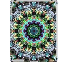 Circle of Colorful Symmetry iPad Case/Skin