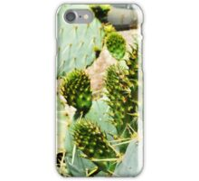 Prickly Pear, Kew Gardens iPhone Case/Skin