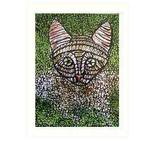 kitten one Art Print