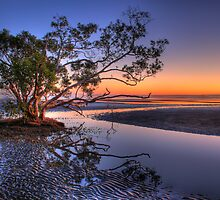 Dawn Reflections by Sarah Whyte