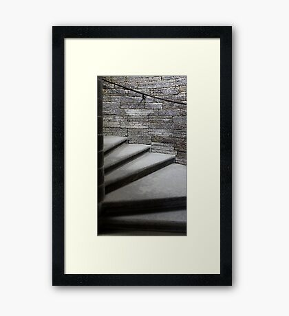step spiral staircase Framed Print