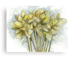 Daffodilia Canvas Print