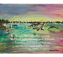 Pelicans Fly- Psalm 139 Photographic Print