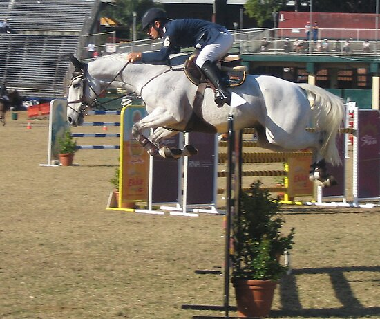 Ekka horse jumping by aussieazsx