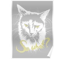 Sad Cat says 'So What?' Poster