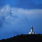 Eagle in flight over Byron by splitsie