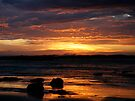 Morning Wave II by Richard Heath
