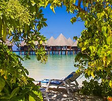 Postcard from Bora-Bora, French Polynesia by Digital Editor .