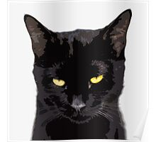 sarcastic cat disapproves  Poster