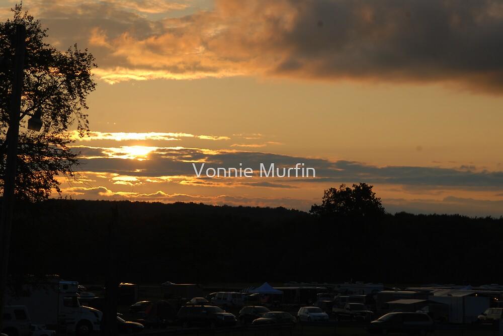 Beautiful Sunset by Vonnie Murfin