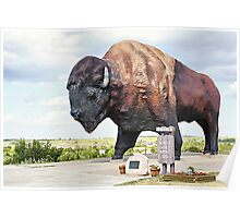 Jamestown Buffalo Poster