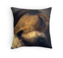 Courage the Beagle Portrait - 5 Throw Pillow
