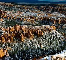 Snow Dusted Hoodoos by Todd Morton