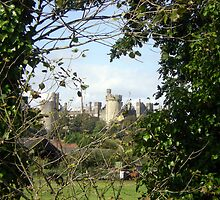 Arundel Castle from hedgerow by Songwriter