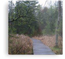 Northern woods Metal Print