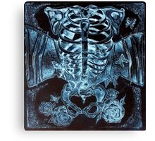 x-ray chest of butterflies Canvas Print