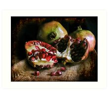 Pomegranates n.2 Art Print