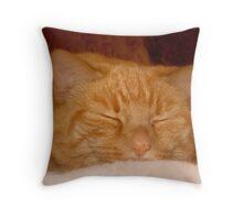 Sweet Goldie Throw Pillow