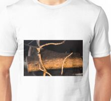 4212015 firewood Unisex T-Shirt