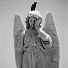 Very Sad Angel with Indifferent Crow by RationalMatthew