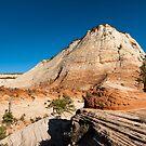 sandstone cliffs in zion national park by peterwey